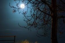 moon-light-1408015802AVM