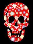 skull-floral