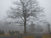 haunted-graveyard-2