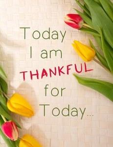 thankful-1081614__340